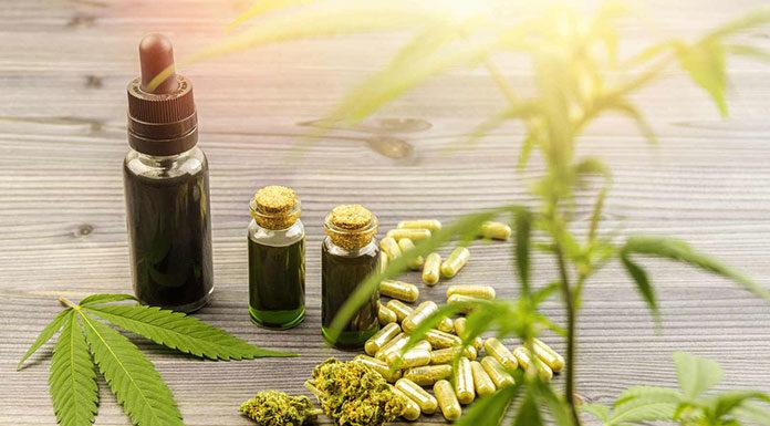 Jaki olejek CBD kupić na początek? Sprawdź cenne wskazówki